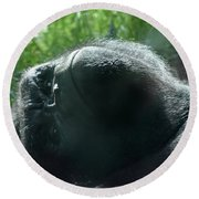 Close-up Of Frowning Adult Mountain Gorilla Round Beach Towel