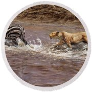 Closing In - Lion Chasing A Zebra Round Beach Towel by Alan M Hunt