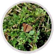 Common Buckeye Butterfly Round Beach Towel