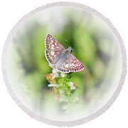 Common Checkered Skipper Butterfly  Round Beach Towel