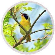 Common Yellowthroat Singing His Little Heart Out Round Beach Towel