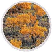 Cottonwoods In Autumn Round Beach Towel by Dustin LeFevre