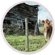 Cow By The Old Barn, Earlville Ny Round Beach Towel by Gary Heller