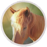 Cute Chestnut Pony Round Beach Towel