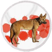 D Is For Dingo Round Beach Towel
