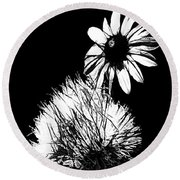 Daisy And Thistle Black And White Round Beach Towel