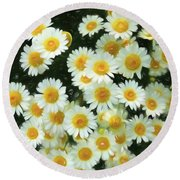 Daisy Crazy For You Round Beach Towel