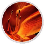 Day Lily Delight Round Beach Towel
