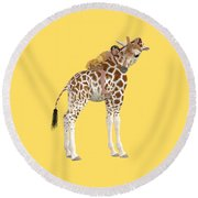 Daydreaming Of Giraffes Png Round Beach Towel