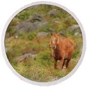 Digital Watercolor Painting Of Stunning Image Of Wild Pony In Sn Round Beach Towel