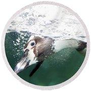 Dive Penguin Dive Round Beach Towel