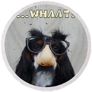 Dog Gone Funny Round Beach Towel by ISAW Company