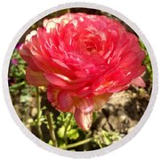 Double Coloured Rose Round Beach Towel