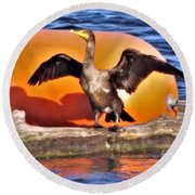 Double Crested Cormorant    Drying Wings         September        Indiana Round Beach Towel