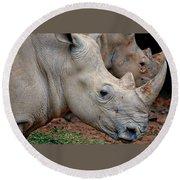 Double Rhino Round Beach Towel