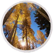 Early Autumn Morning Round Beach Towel