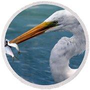 Egret Feeding  Round Beach Towel