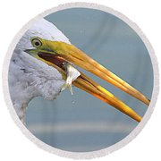 Egret Finishing Lunch  Round Beach Towel