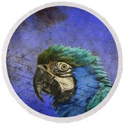 Blue Exotic Parrot- Pirates Of The Caribbean Round Beach Towel