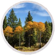 Fall Aspen Round Beach Towel by Michael Chatt