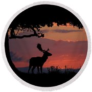 Fallow Stag At Sunset Round Beach Towel