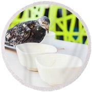 Fast Food Asian Pigeon Round Beach Towel