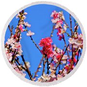 Pinks And Blues Round Beach Towel