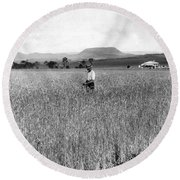 Field Of Wheat Campbell S Plains  Darling Downs Round Beach Towel