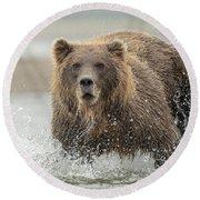 Fish Coastal Brown Bear Of Alaska Round Beach Towel