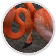 Flamingo Couple Round Beach Towel