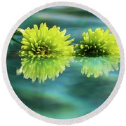 Floating Daisies 2 Round Beach Towel by Dawn Richards