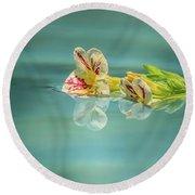 Floating Petunia Round Beach Towel by Dawn Richards