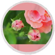 Flower Buds Rising Round Beach Towel