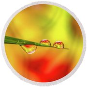 Flower In Water Droplet Round Beach Towel