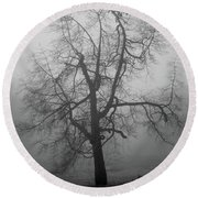Foggy Tree In Black And White Round Beach Towel by William Selander