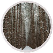 Forest In Sleeping Bear Dunes In January Round Beach Towel