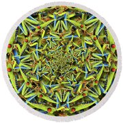 Forms Of Nature #14 Round Beach Towel