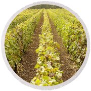 French Vineyards Of The Champagne Region Round Beach Towel