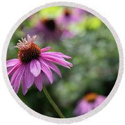 Frilly Hat Echinacea Round Beach Towel