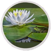 Frog And Lily Round Beach Towel