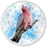 G Is For Galah Round Beach Towel