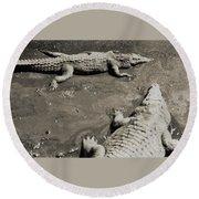 Gator  Park Residence Round Beach Towel