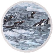 Gentoo Penguins By Alan M Hunt Round Beach Towel