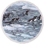 Gentoo Penguins By Alan M Hunt Round Beach Towel