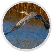 Great Blue Fly Away Round Beach Towel by Tom Claud
