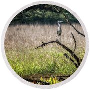 Great Blue Heron On A Snag Round Beach Towel