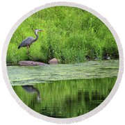 Great Blue Heron Square Round Beach Towel