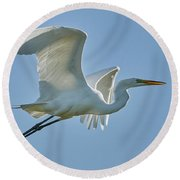 Great Egret, Yolo County California Round Beach Towel