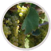 Green Grapes On The Vine 10 Round Beach Towel