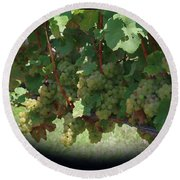 Green Grapes On The Vine 16 Round Beach Towel